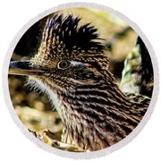 Cresting Roadrunner Round Beach Towel