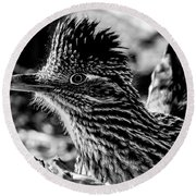 Cresting Roadrunner, Black And White Round Beach Towel