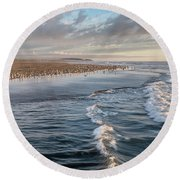 Round Beach Towel featuring the photograph Crests And Birds by Greg Nyquist
