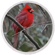 Crimson Cardinal Round Beach Towel