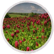 Crimson Clover Patch Round Beach Towel by Barbara Bowen