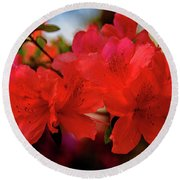 Crimson Lights Round Beach Towel