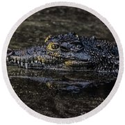 Crocodile Reflections Round Beach Towel