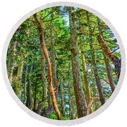 Crooked Trees Of Mt Roberts Round Beach Towel