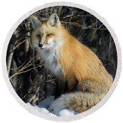 Crossroads With A Red Fox Round Beach Towel
