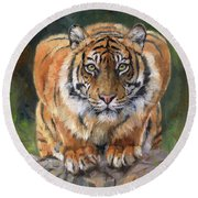 Round Beach Towel featuring the painting Crouching Tiger by David Stribbling