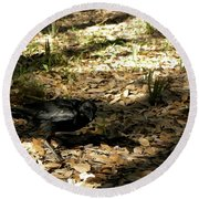 Round Beach Towel featuring the photograph Crow by Chris Mercer