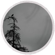 Crow Perched On Tree Top - Black And White Round Beach Towel