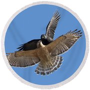 Round Beach Towel featuring the photograph Crow Vs Hawk by Mircea Costina Photography