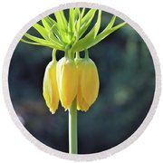 Crown Lily Round Beach Towel