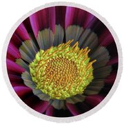 Round Beach Towel featuring the photograph Crown Of Pollen by David and Carol Kelly