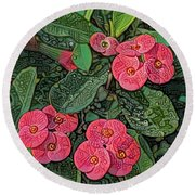 Crown Of Thorns Delight Round Beach Towel