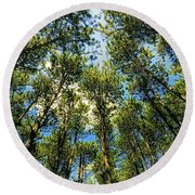 Round Beach Towel featuring the photograph Crystal Lake Il Pine Grove And Sky by Tom Jelen