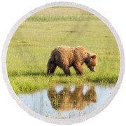 Cub Reflection Round Beach Towel
