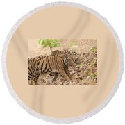 Cubs On The March Round Beach Towel