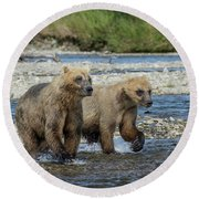 Cubs On The Prowl Round Beach Towel