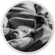 Cuddle Puddle Round Beach Towel