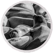 Cuddle Puddle Round Beach Towel