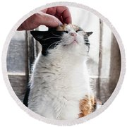 Round Beach Towel featuring the photograph Cuddles by Laura Melis
