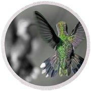 Cumberland Gap Hummingbirds Round Beach Towel