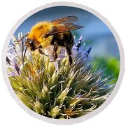 Curious Bee Round Beach Towel