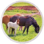 Curious Colt And Mares Round Beach Towel
