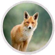 Curious Fox Round Beach Towel by Roeselien Raimond