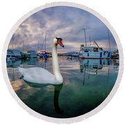 Round Beach Towel featuring the photograph Curious by Okan YILMAZ