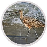 Round Beach Towel featuring the photograph Curlew And Tides by William Lee