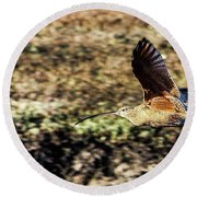 Curlew In Flight Round Beach Towel