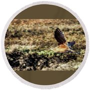 Curlew In Flight Round Beach Towel
