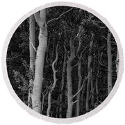 Round Beach Towel featuring the photograph Curves Of A Forest by James BO Insogna