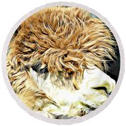 Soft And Shaggy Round Beach Towel
