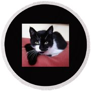 Cute Cat Round Beach Towel