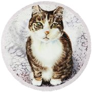Cute Furry Friend Cat Painting Round Beach Towel