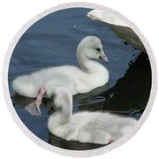 Cygnets Round Beach Towel