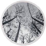 Cypress Abstract Round Beach Towel