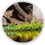 Cypress And Flower Reflections Round Beach Towel