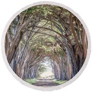 Round Beach Towel featuring the photograph Cypress Embrace by Everet Regal