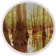 Cypress Forest Swamp Round Beach Towel
