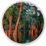 Round Beach Towel featuring the photograph Cypress Grove by Nicholas Blackwell