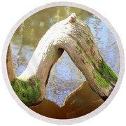 Cypress Knees Round Beach Towel