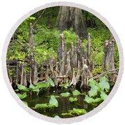 Cypress Knees In Florida Round Beach Towel