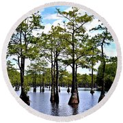 Round Beach Towel featuring the photograph Cypress Trees Of Georgia by Tara Potts