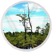 Round Beach Towel featuring the photograph Cypress Trees by Tara Potts
