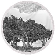 Cypresses Round Beach Towel