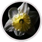 Daffodil By Sunlight Round Beach Towel