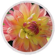 Round Beach Towel featuring the photograph Dahlia In The Sunshine by Phil Abrams