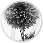 Dahlia In Black And White Round Beach Towel by Mark Alder