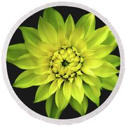 Round Beach Towel featuring the photograph Dahlia In Yellow by Julie Palencia